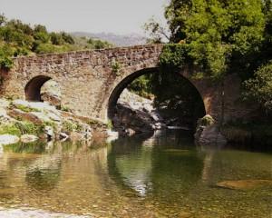 Actividad Ruta de los puentes
